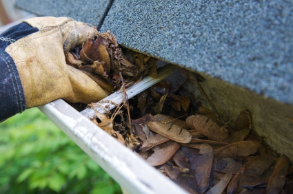 Gutter Cleaning East Bay Clean Gutters Tracy Livermore